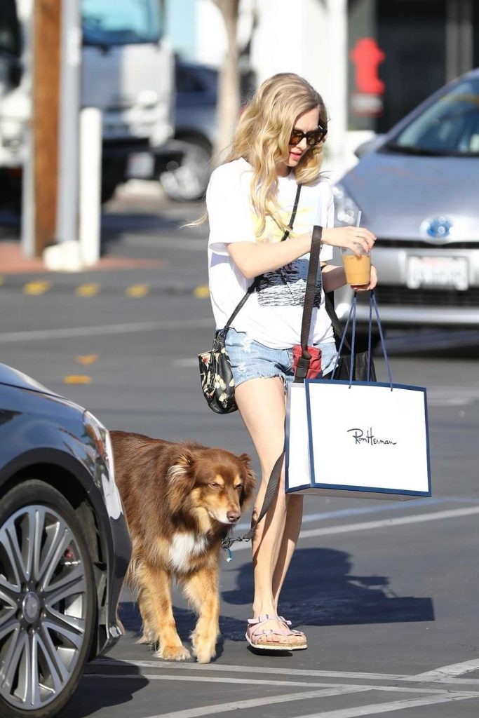 Amanda Seyfried Walks Her Dog in West Hollywood 03/08/2018-2