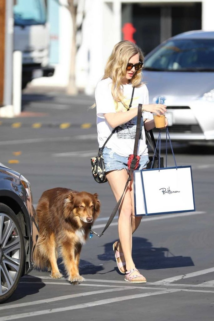 Amanda Seyfried Walks Her Dog in West Hollywood 03/08/2018-3