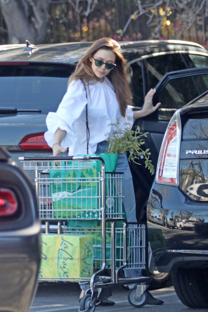 Elizabeth Olsen Picks up Groceries from Whole Foods in LA 03/27/2018-4