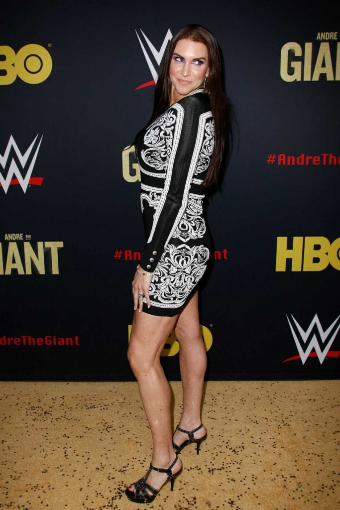 Stephanie McMahon at the Andre the Giant Premiere in Hollywood 03/29/2018-4