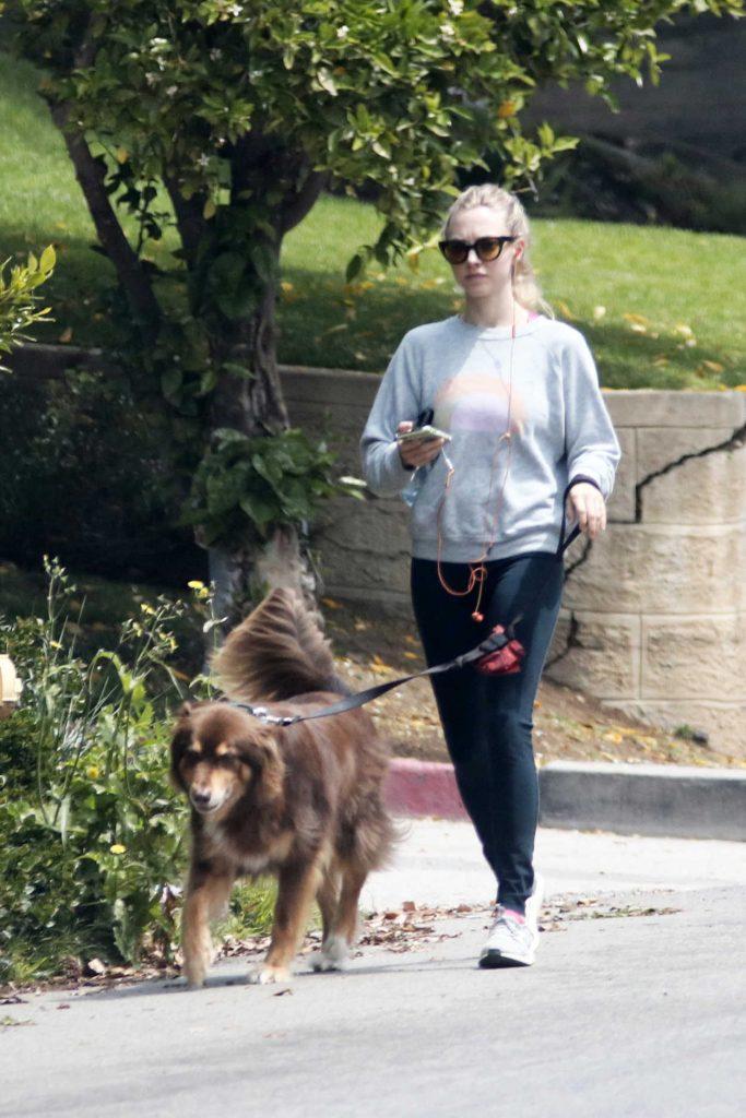Amanda Seyfried Walks Her Dog Finn in Los Angeles 04/05/2018-2