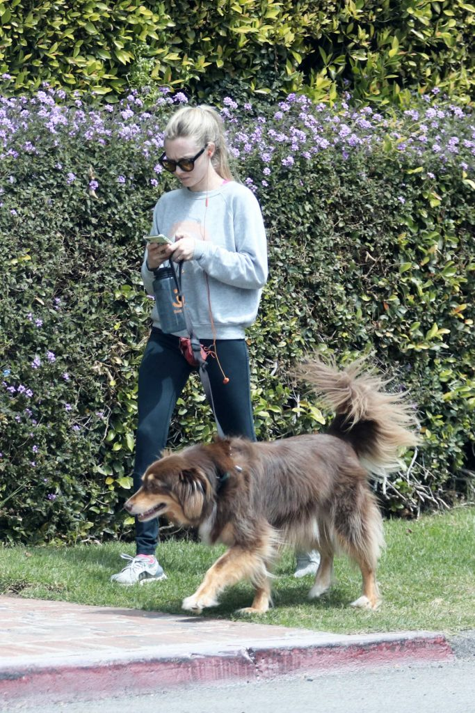 Amanda Seyfried Walks Her Dog Finn in Los Angeles 04/05/2018-3