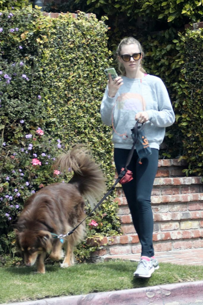 Amanda Seyfried Walks Her Dog Finn in Los Angeles 04/05/2018-4