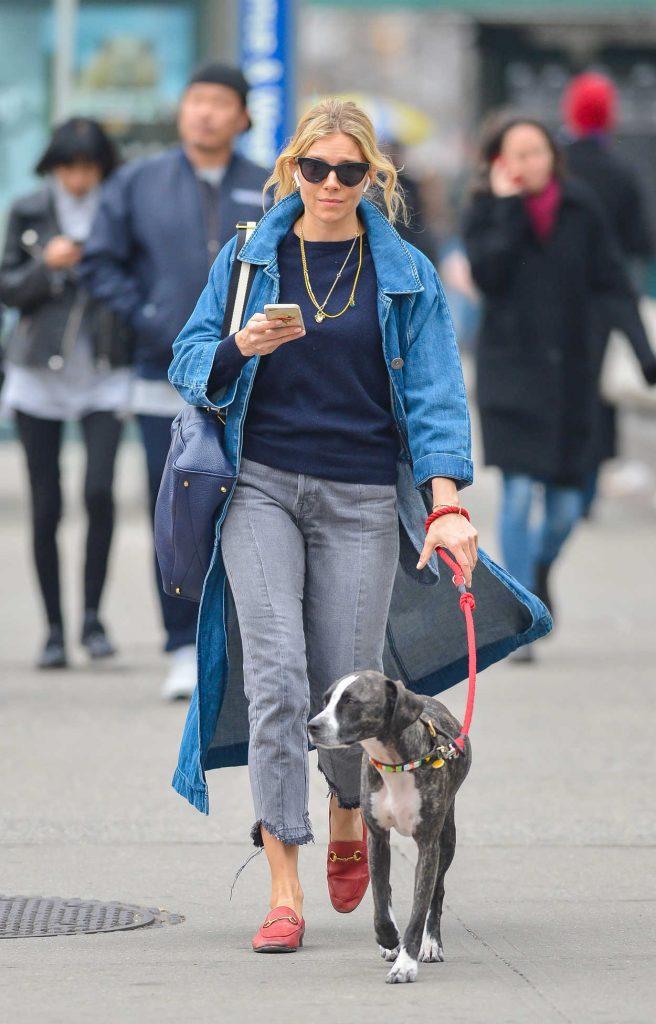Sienna Miller Walks Her Dog in New York City 04/12/2018-1