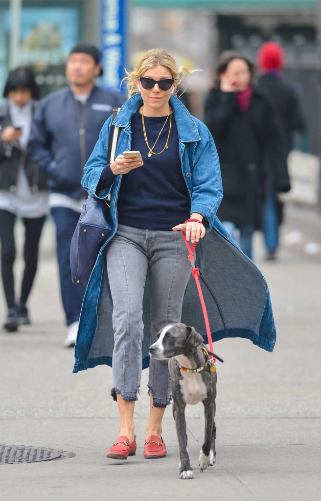 Sienna Miller Walks Her Dog in New York City 04/12/2018-2