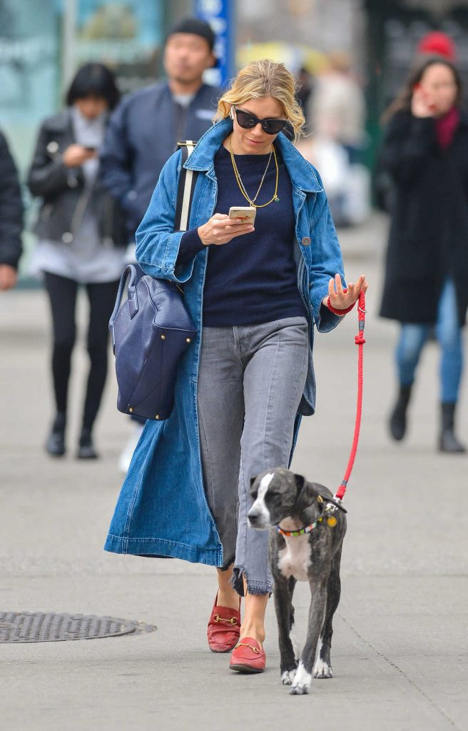 Sienna Miller Walks Her Dog in New York City 04/12/2018-3