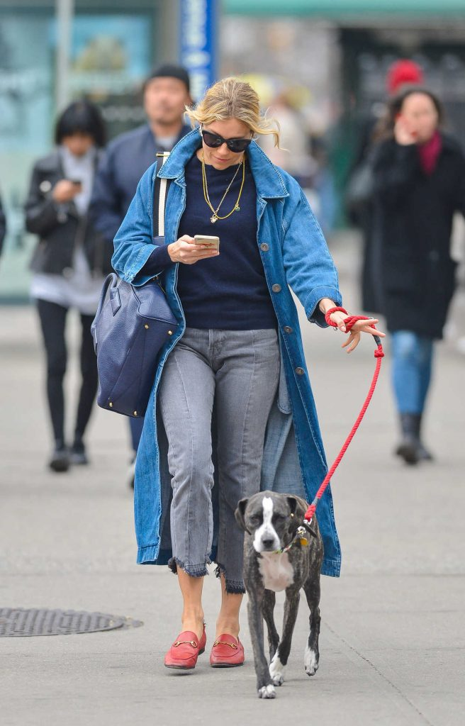 Sienna Miller Walks Her Dog in New York City 04/12/2018-4