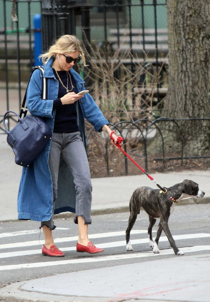 Sienna Miller Walks Her Dog in New York City 04/12/2018-5