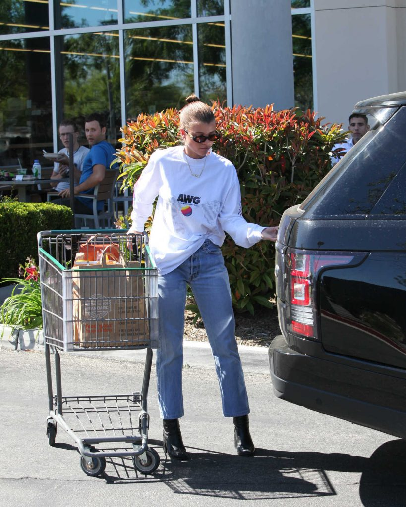Sofia Richie Goes Grocery Shopping in Calabasas 04/17/2018-4