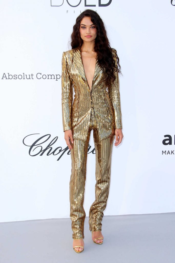 Shanina Shaik at amfAR's 25th Cinema Against AIDS Gala During the 71st Cannes Film Festival in Cannes 05/17/2018-1
