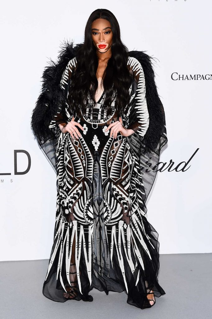 Winnie Harlow at amfAR's 25th Cinema Against AIDS Gala During the 71st Cannes Film Festival in Cannes 05/17/2018-1