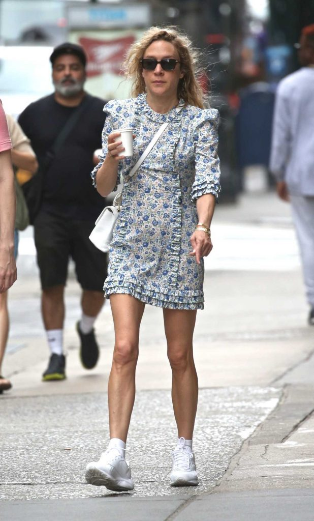 Chloe Sevigny Was Seen Out in New York City 06/22/2018-3