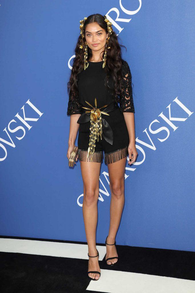 Shanina Shaik at 2018 CFDA Fashion Awards at Brooklyn Museum in New York City 06/04/2018-1