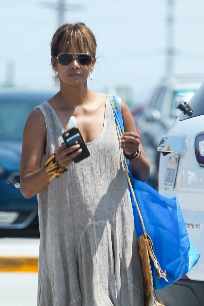 Halle Berry in a Gray Sundress