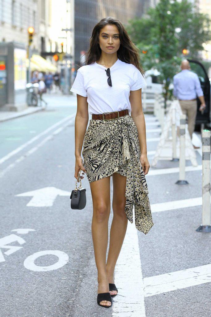Shanina Shaik in an Animal Print Skirt