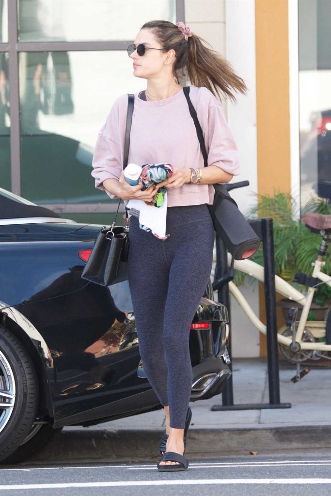Alessandra Ambrosio in a Pink Long Sleeves T-Shirt
