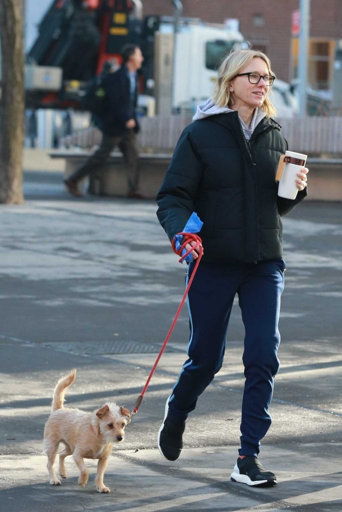 Daleela Echahly Street Fashion: Naomi Watts In A Black Puffer Jacket Walks Her Dog Out In