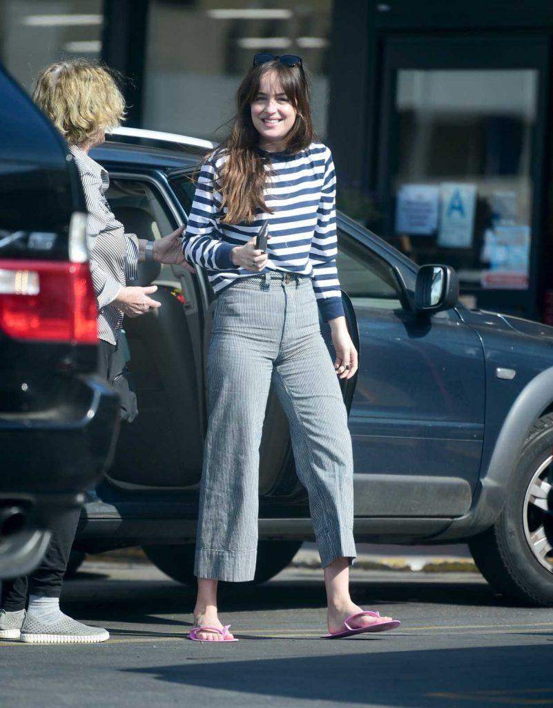 Dakota Johnson in a Striped Long Sleeves T-Shirt