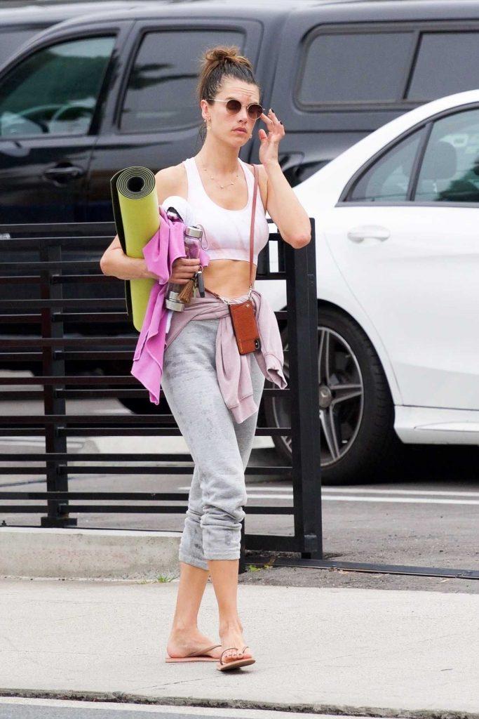 Alessandra Ambrosio in a Gray Sweatpants