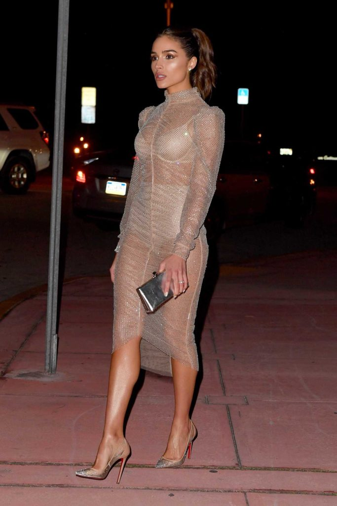 Olivia Culpo in a Beige See-Through Dress