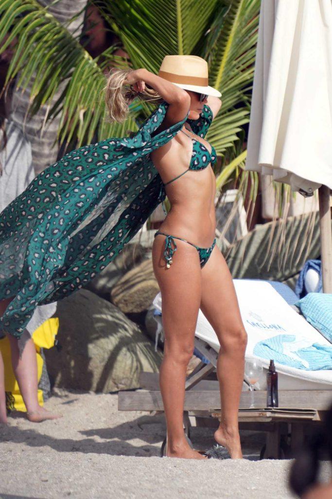 Sylvie Meis in a Green Bikini
