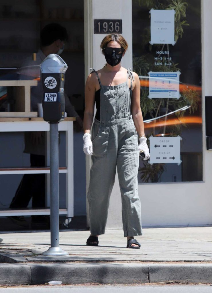 Ashley Tisdale in a Gray Jumpsuit