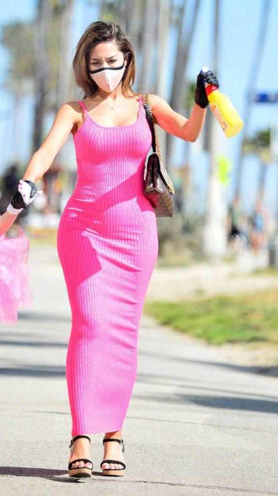 Farrah Abraham in a Pink Dress
