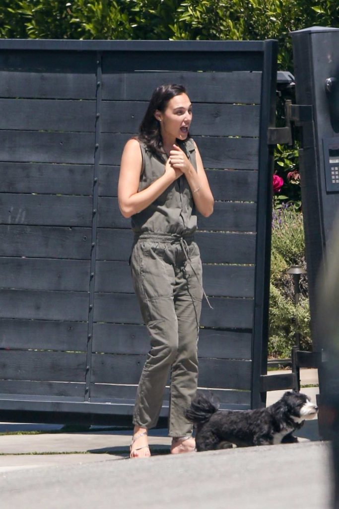 Gal Gadot in a Gray Jumpsuit