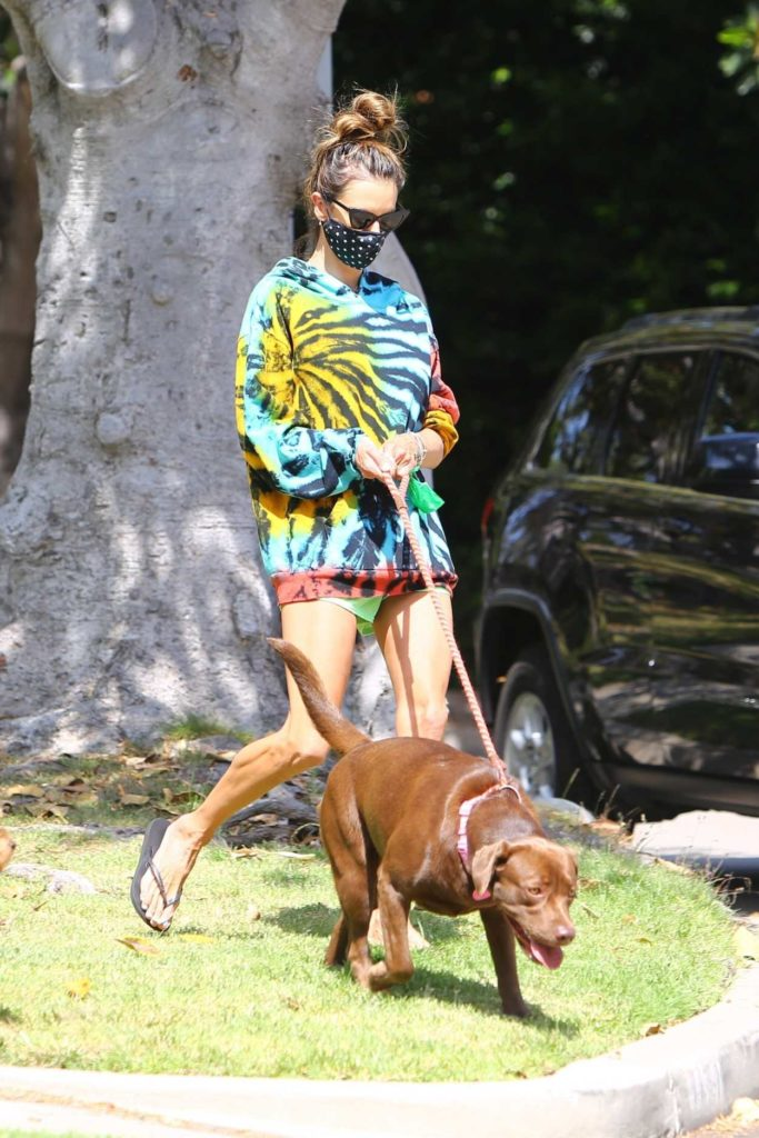 Alessandra Ambrosio in a Full Colour Hoody