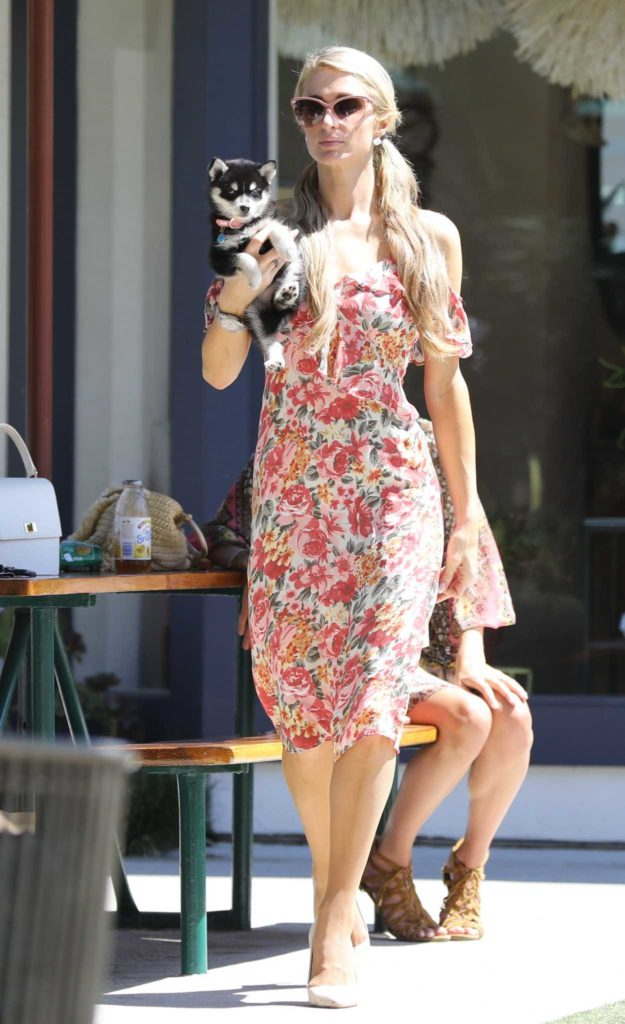 Paris Hilton in a Floral Dress