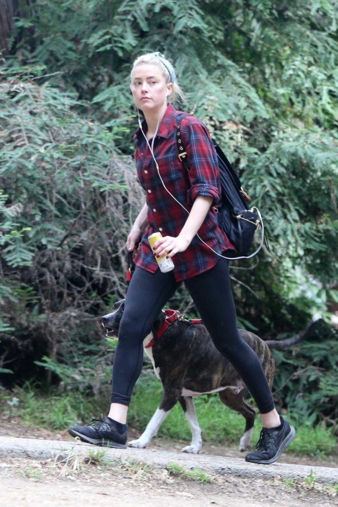Amber Heard in a Plaid Shirt