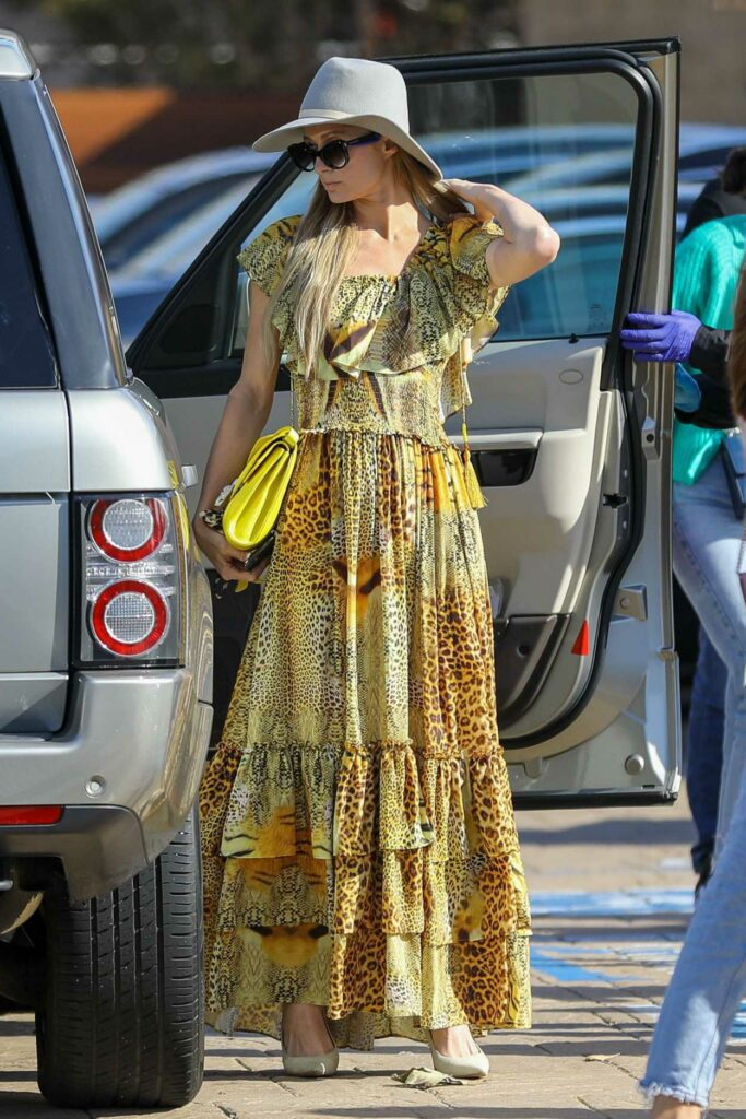 Paris Hilton in a Yellow Animal Print Dress