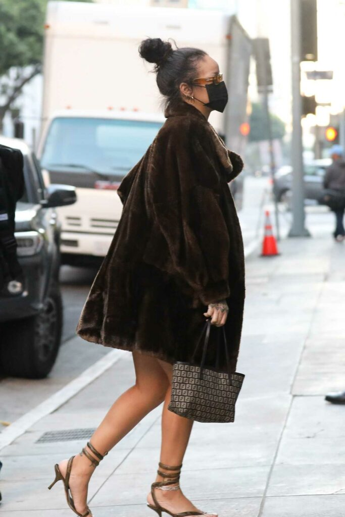 Rihanna in a Brown Fur Coat