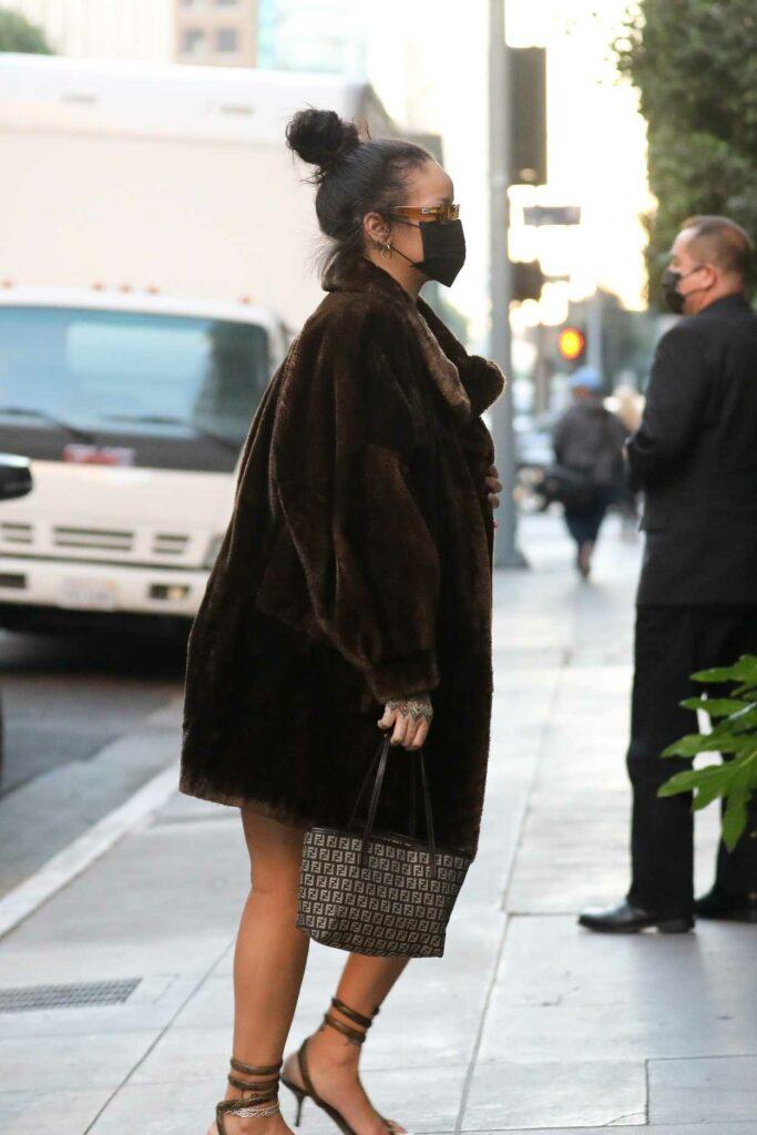 Rihanna in a Brown Fur Coat