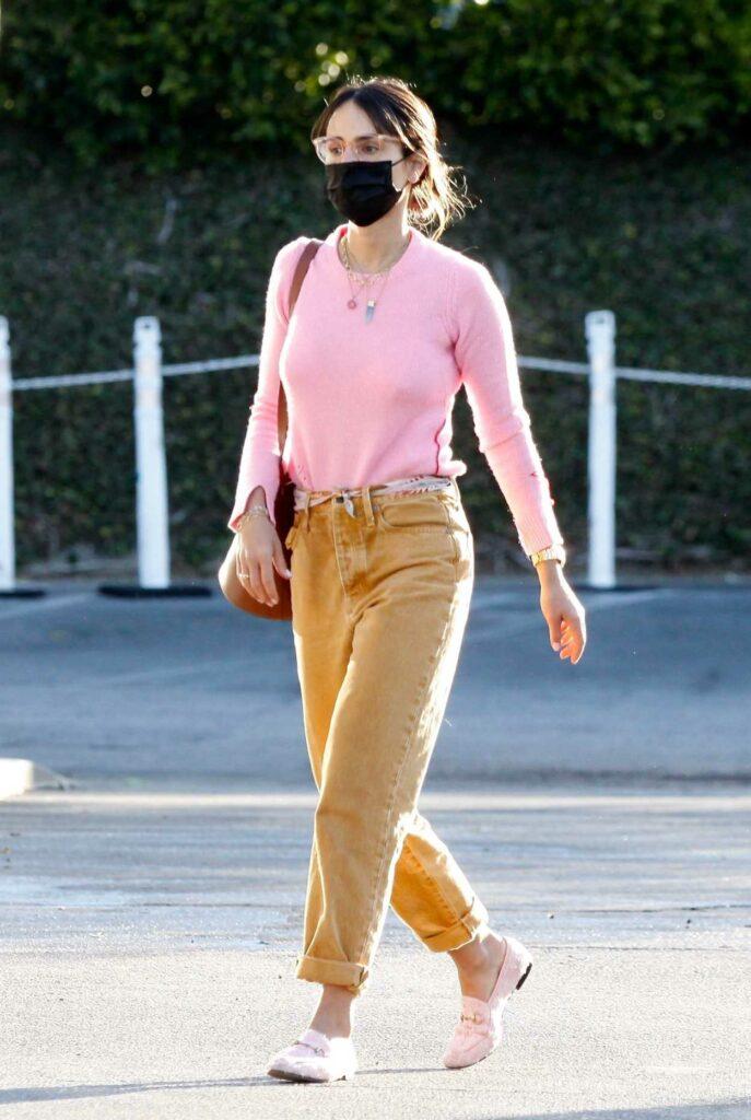 Jordana Brewster in a Pink Blouse