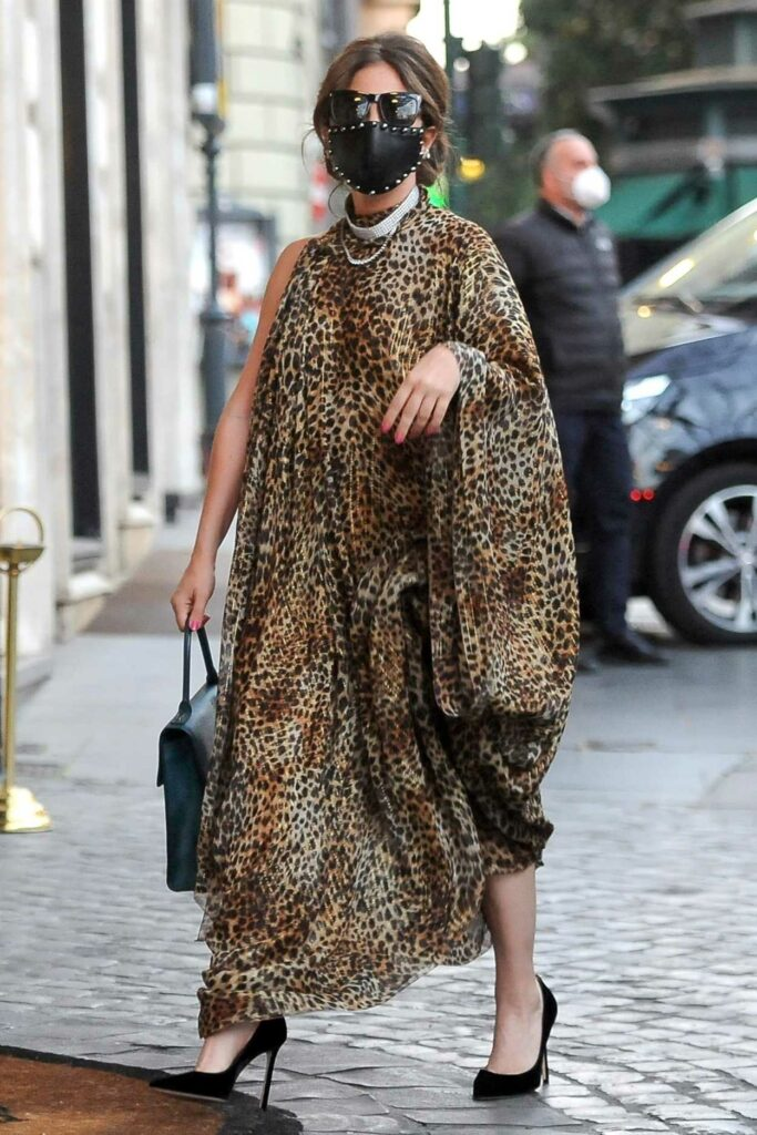 Lady Gaga in an Animal Print Dress