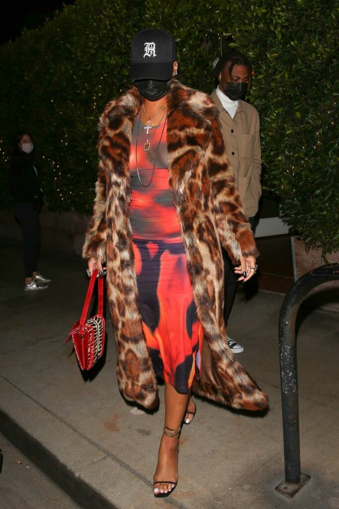 Rihanna in an Animal Print Fur Coat