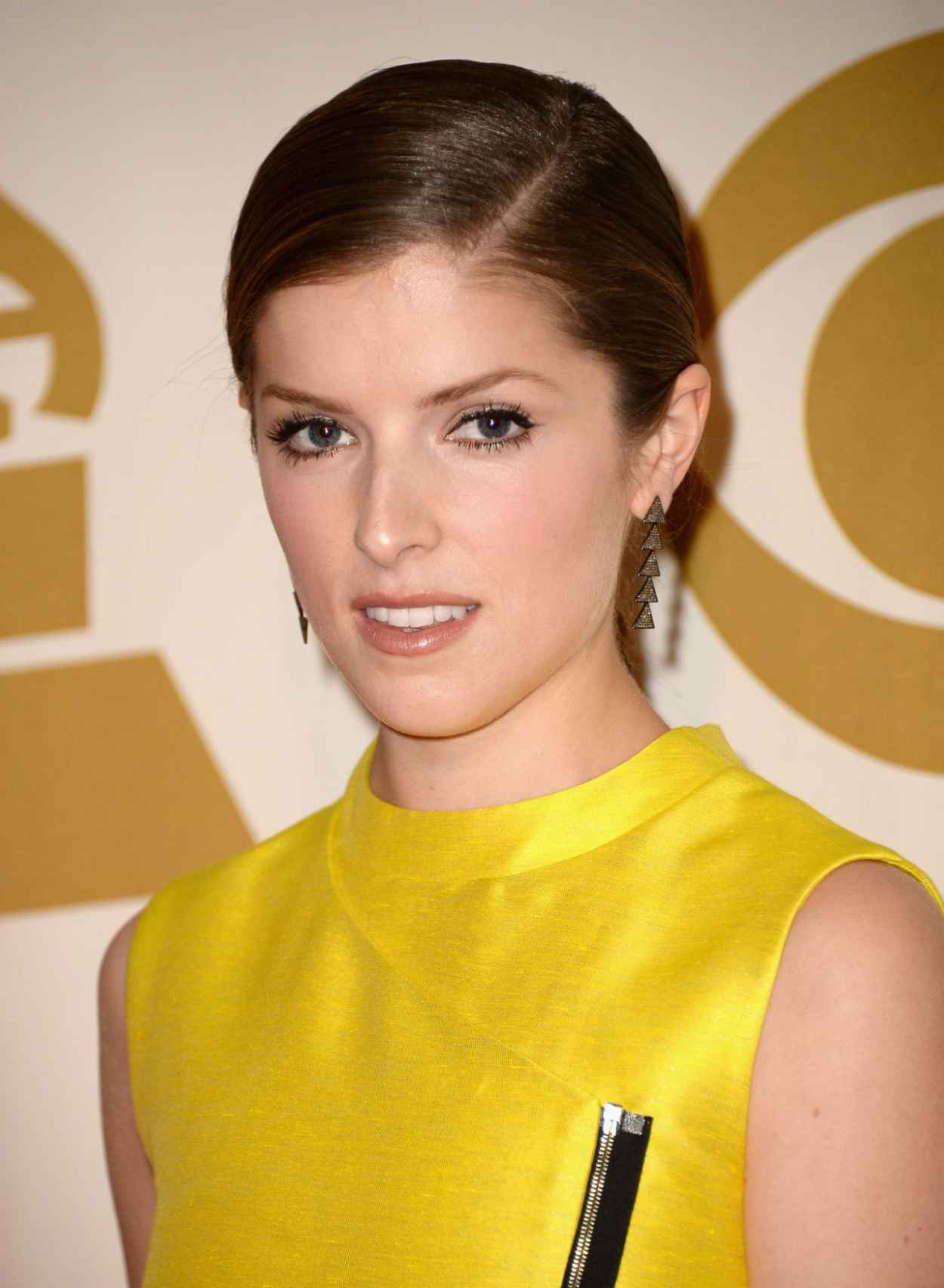 Anna Kendrick - A GRAMMY Salute To The Beatles in Los Angeles, January 2015-1