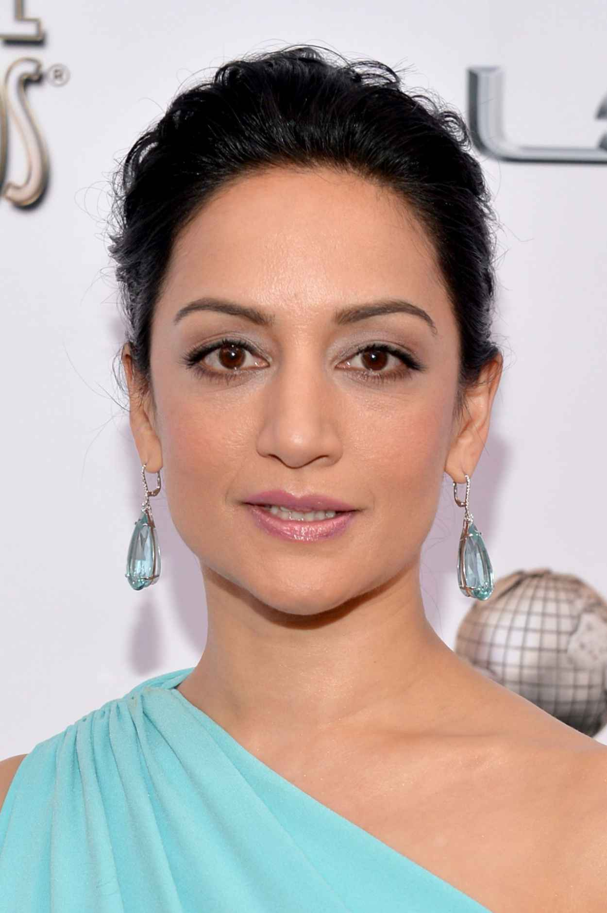 Archie Panjabi Wearing Ports 1961 Gown - 2015 NAACP Image Awards in Pasadena-1