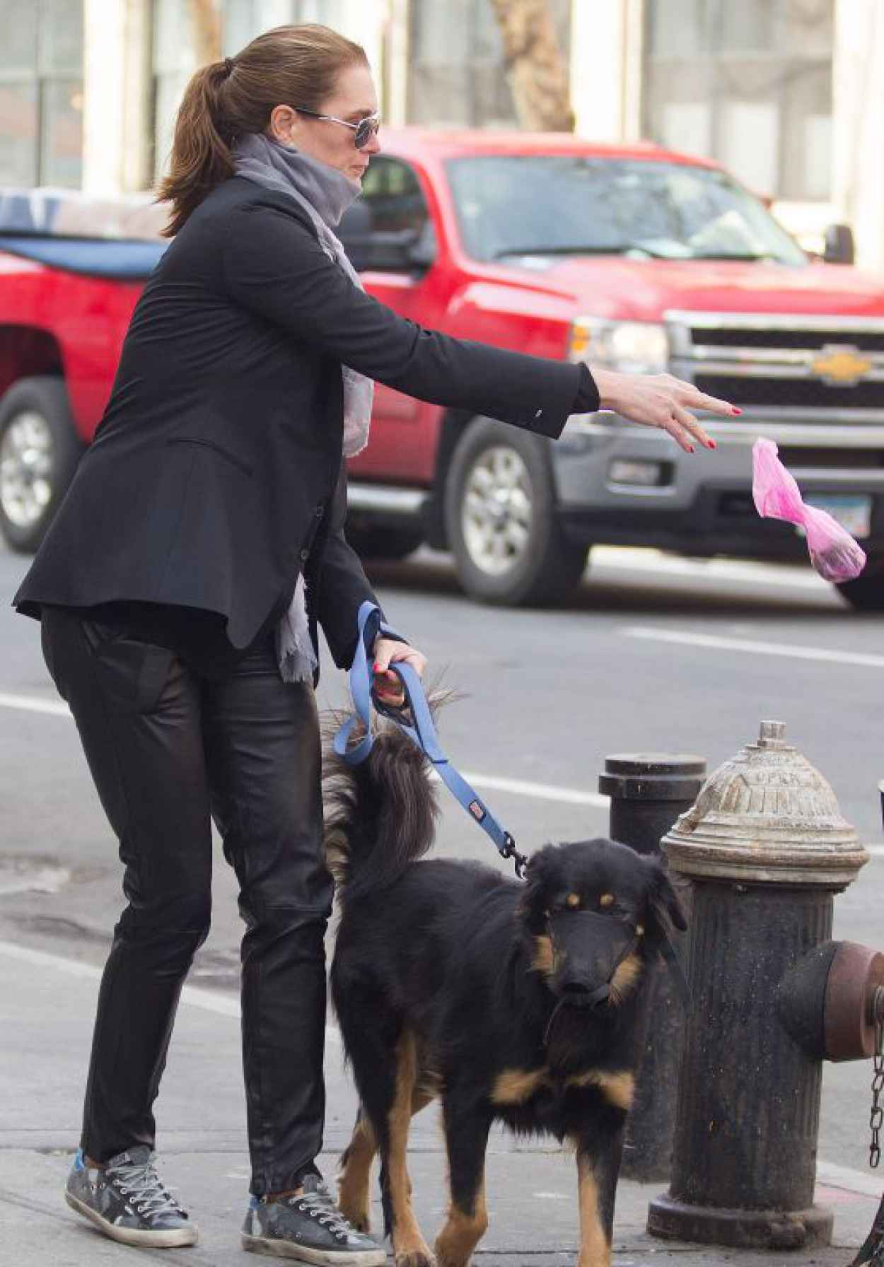 Brooke Shields - Picking up Dog Poop in New York City, April 2015-1
