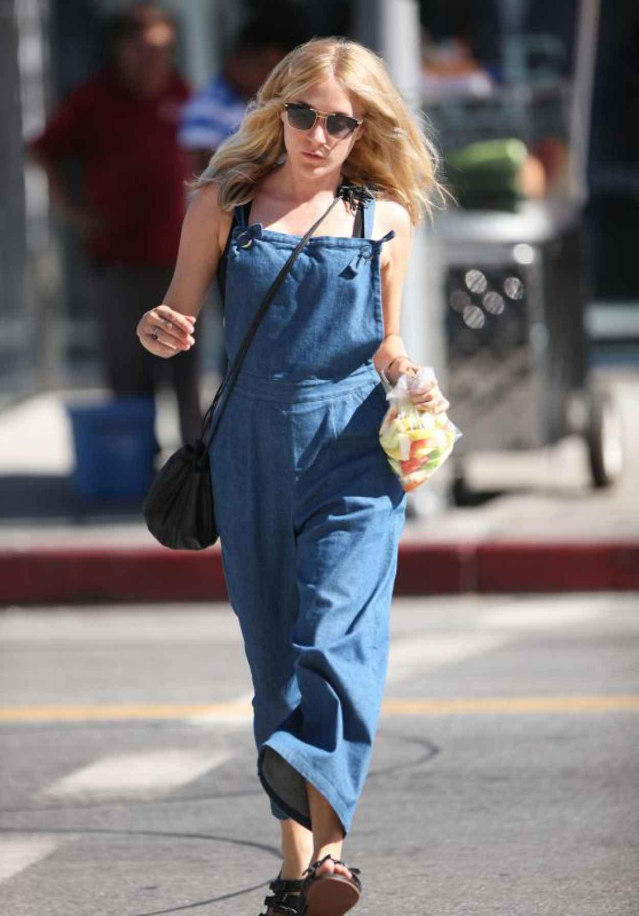 Chloe Sevigny Summer Style - Shopping in LA, July 2015-1