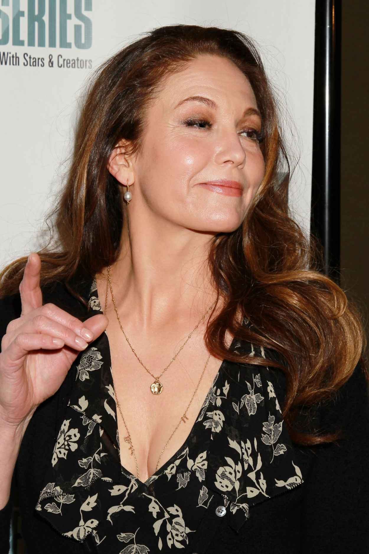 Diane Lane - N.Y. Film Critic Series Premiere of Every Secret Thing in New York-2