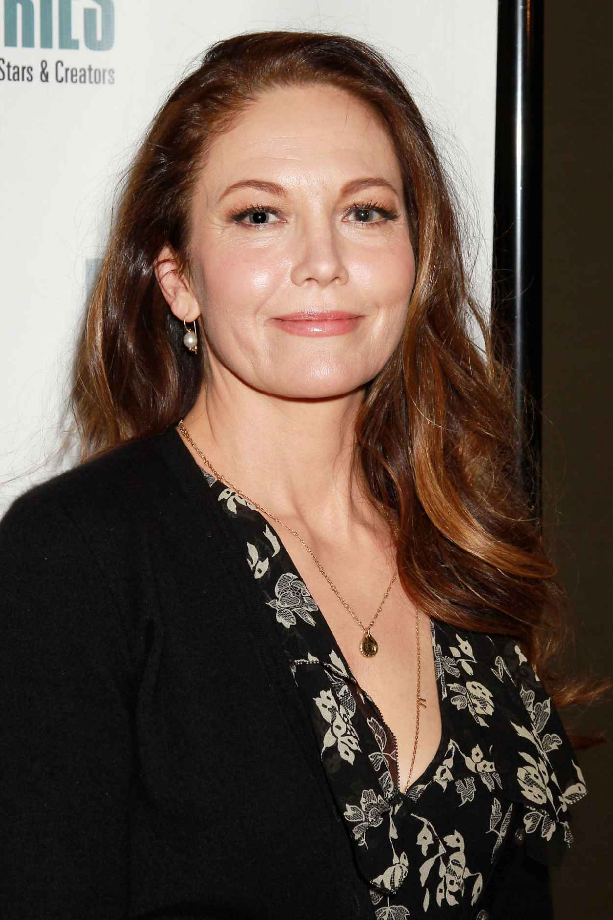 Diane Lane - N.Y. Film Critic Series Premiere of Every Secret Thing in New York-3