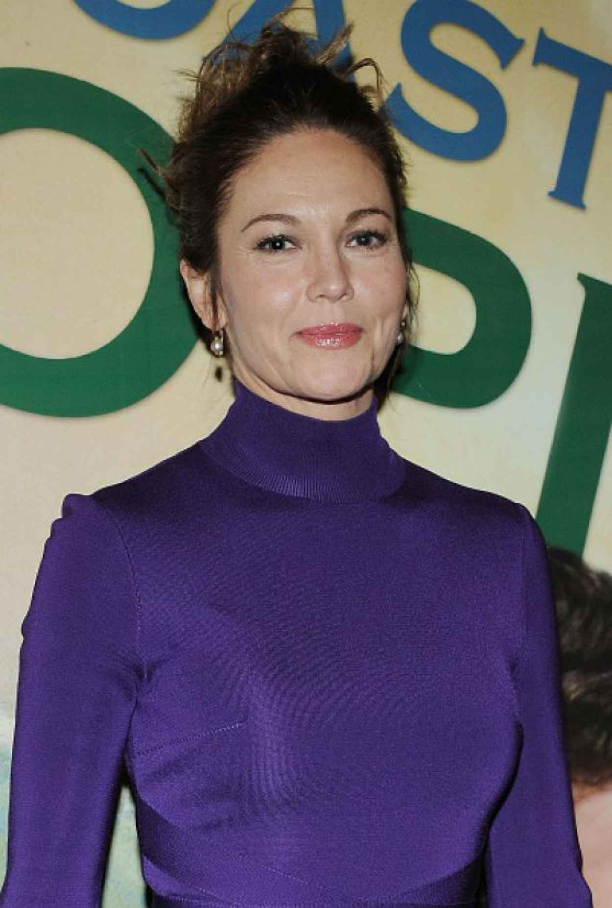 Diane Lane - The Mystery of Love and Sex Opening Night in New York-3