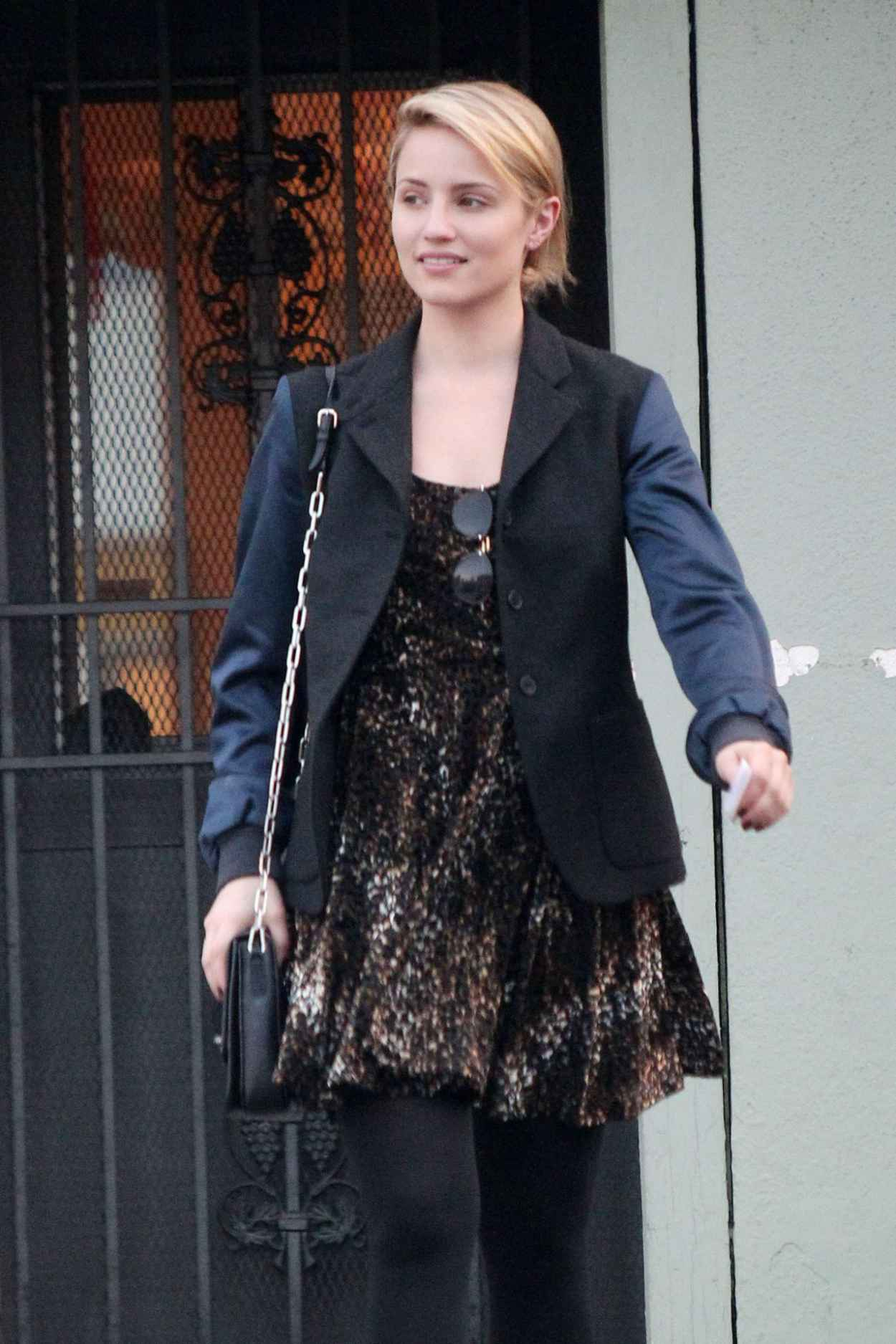 Dianna Agron Street Style - New Stone Age Store in West Hollywood-1