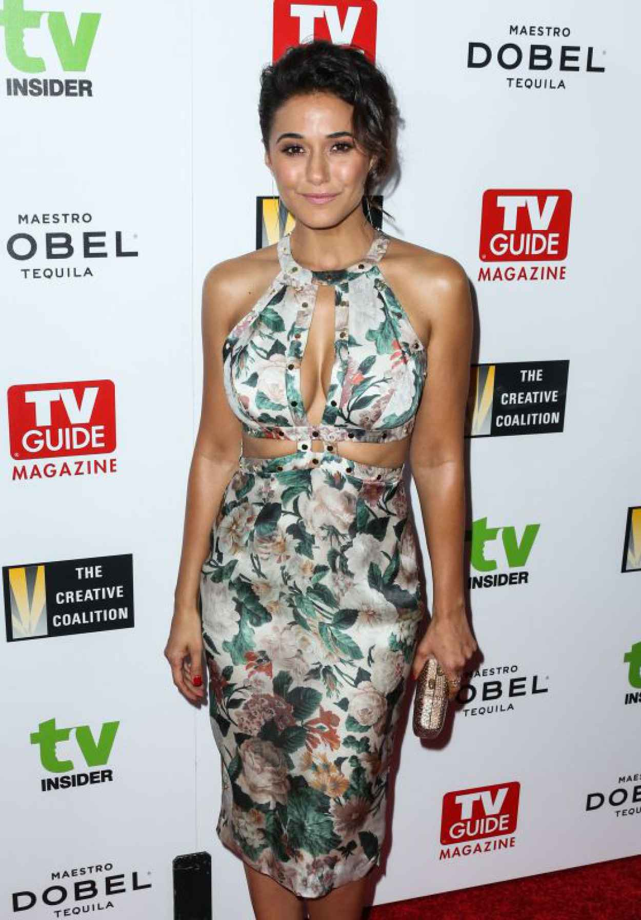 Emmanuelle Chriqui - 2015 Television Industry Advocacy Awards in West Hollywood-1