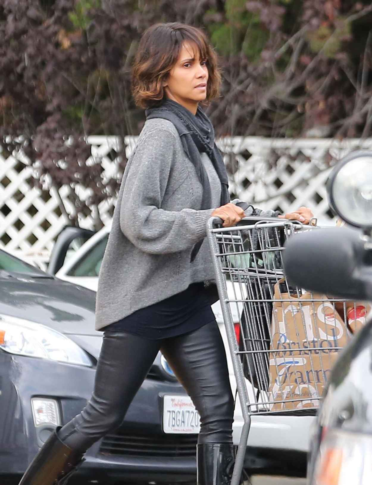 Halle Berry Street Style - Stocks up on Groceries at Bristol Farms in Beverly Hills - Dec. 2015-1