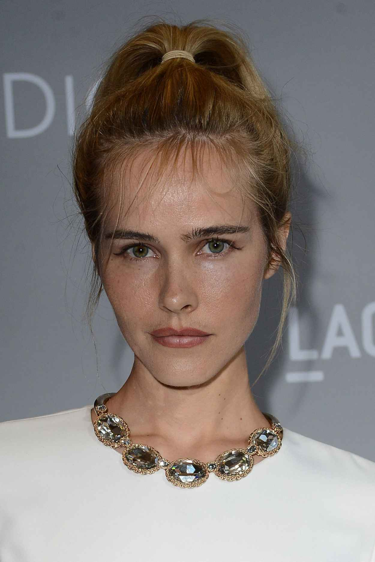 Isabel Lucas - Orchard Premiere of Dior and I in Los Angeles-2