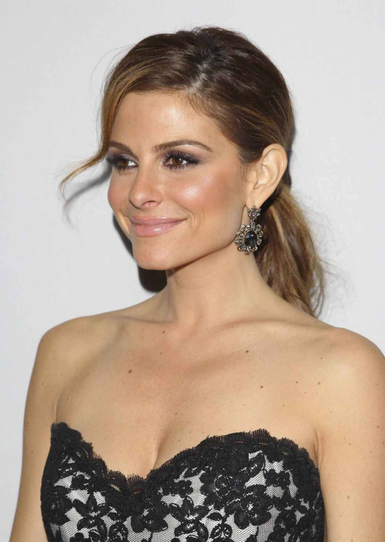 Maria Menounos on Red Carpet - Make-A-Wish Wishing Well Winter Gala in Beverly Hills - Dec. 2015-1