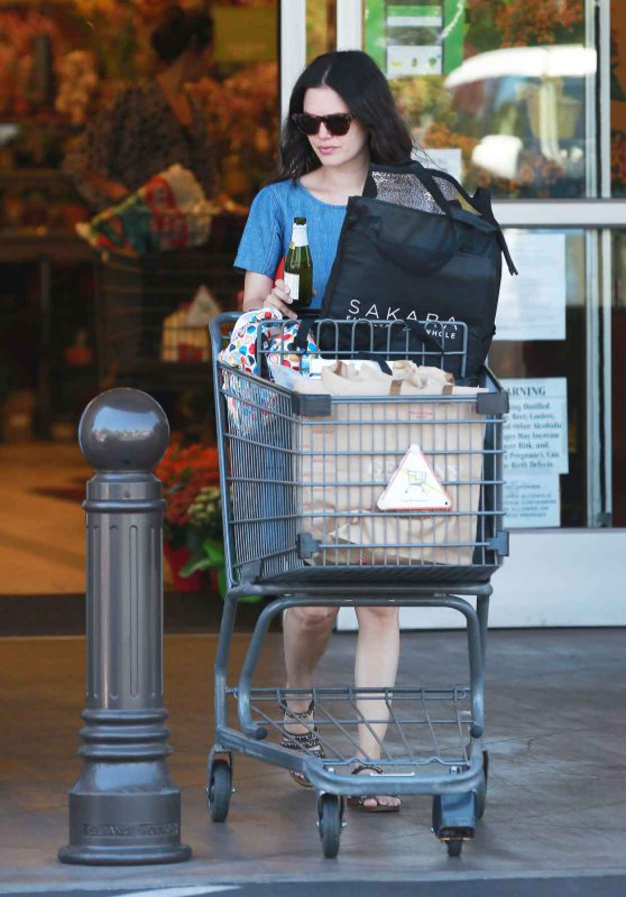 Rachel Bilson - Grocery Shopping at Gelsons in LA, June 2015-1